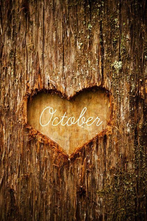 Zen Saturday: October Favourites