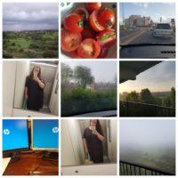 PhotoGrid_1503423696243