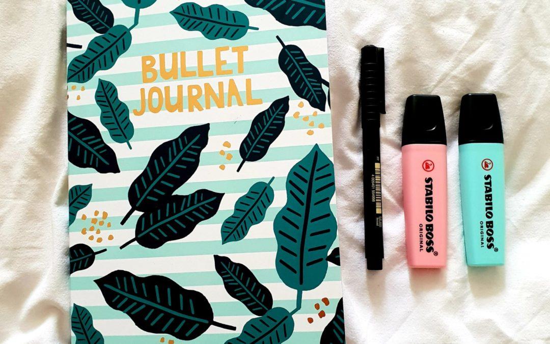 DIY: Review Hema Bullet Journal